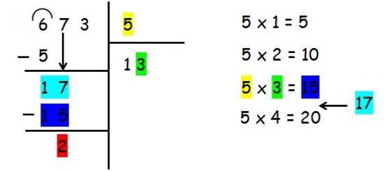 division5.jpg