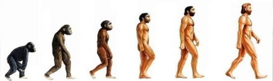 evolution-homme-2.jpg